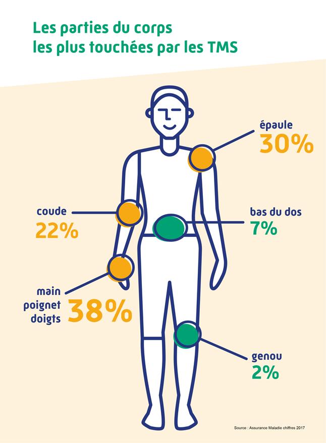 Statistiques des TMS
